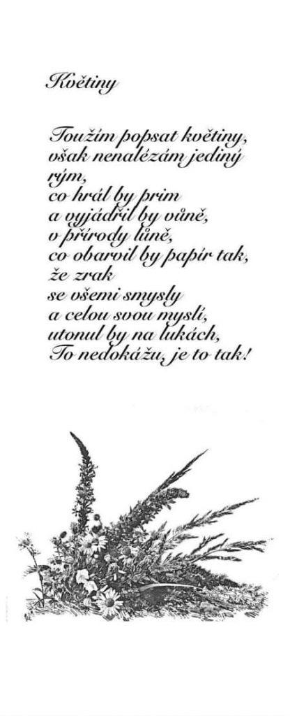 Zdeňka Kolibačová - Květiny